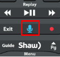 BlueCurve TV Remote Control Microphone Button