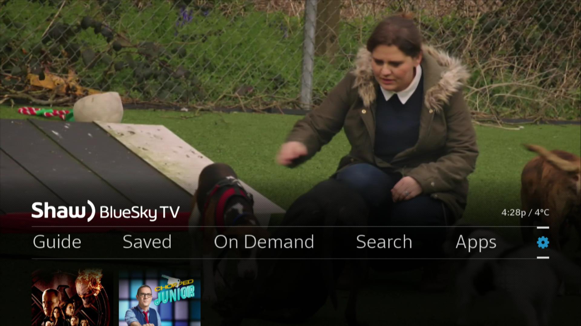 BlueSky TV > Menu > Settings