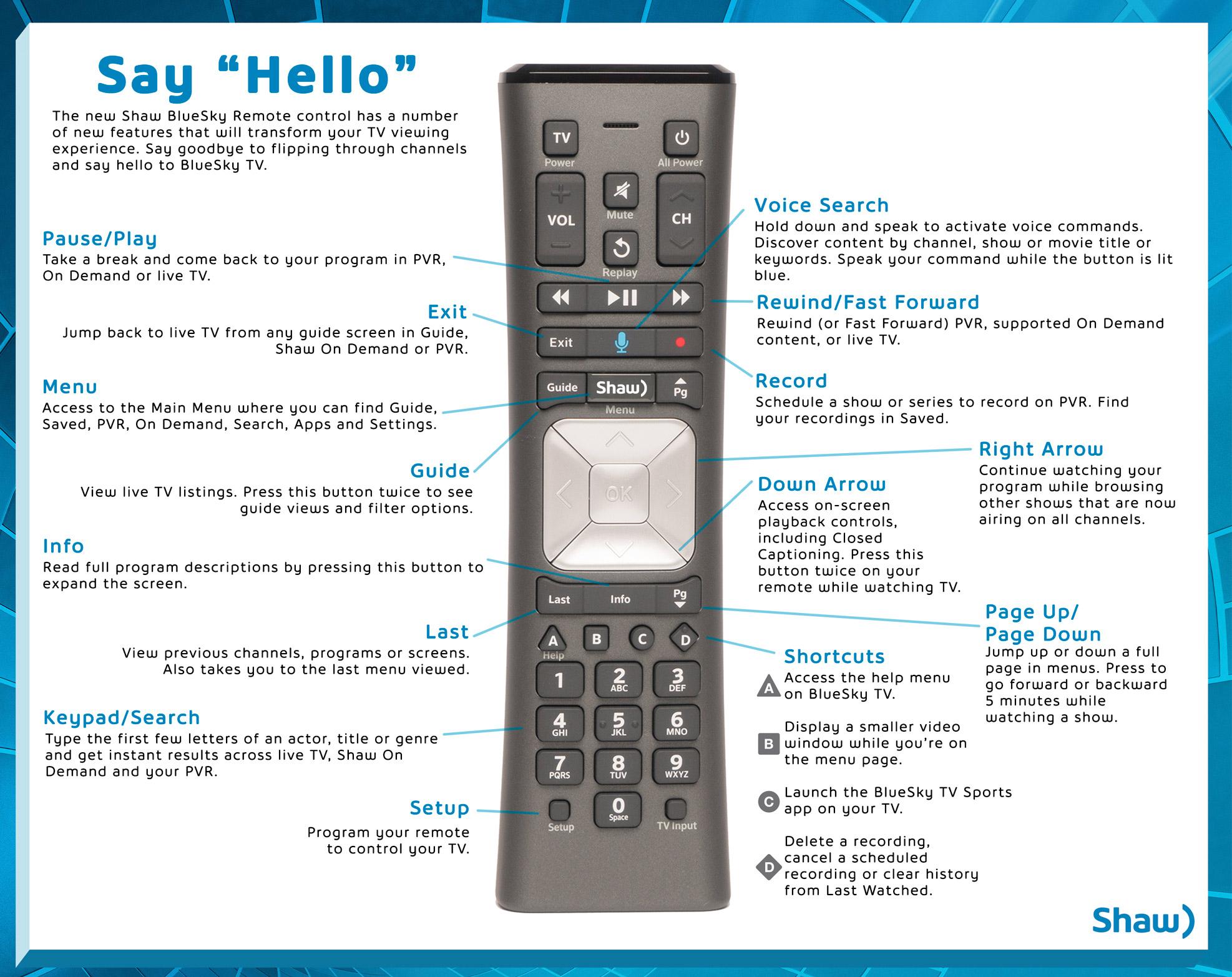 BlueSky TV Voice Remote