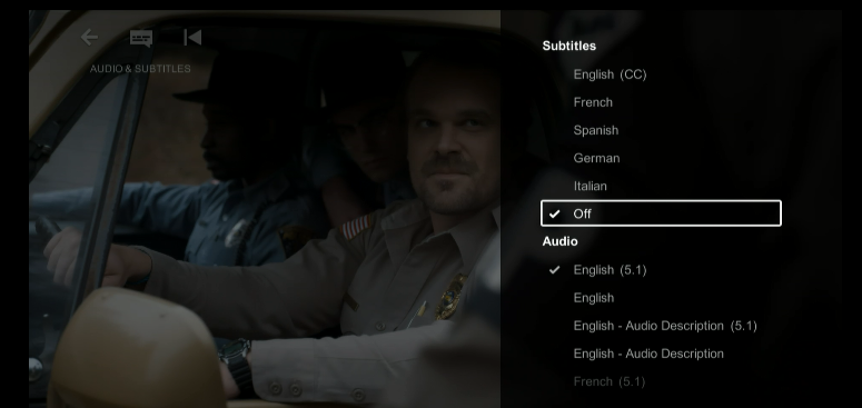 How to use subtitles and audio description in Netflix on