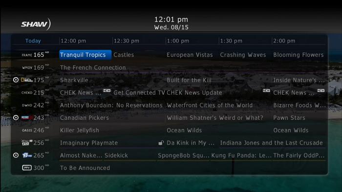 HD Guide Full Screen Guide