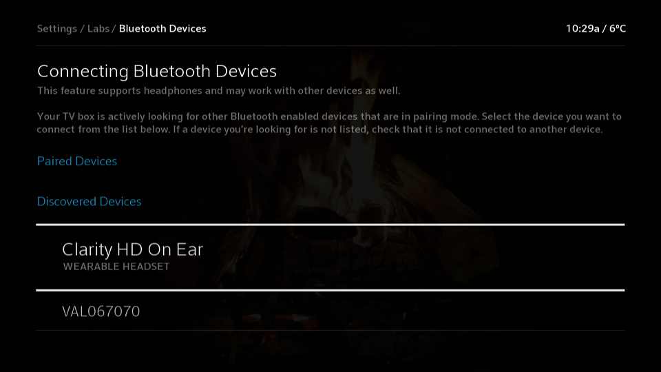 Discovered Bluetooth Devices