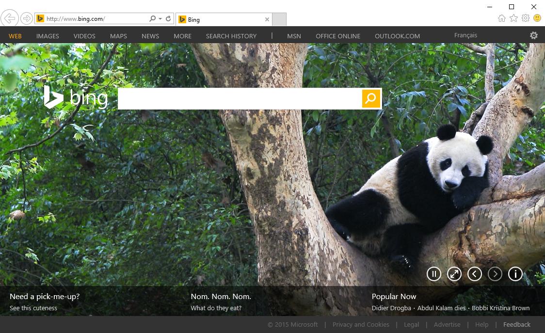Microsoft Internet Explorer 11 - Bing Search