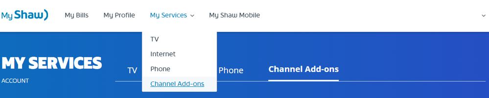 My Services - Channel Add-ons.png